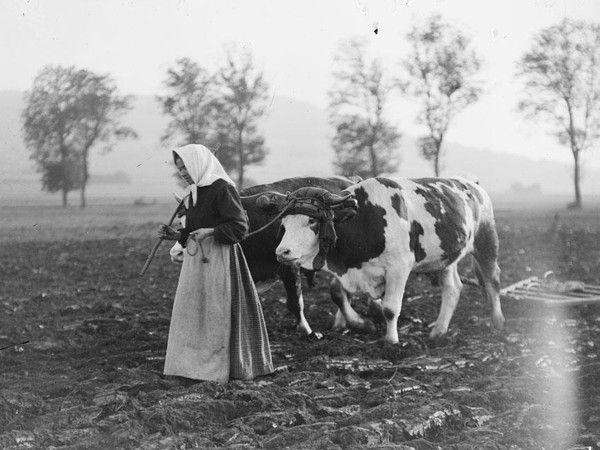 les  femmes pendant  la  guerre de  14..18